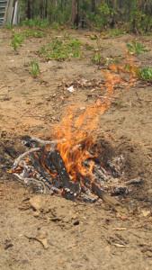 Pongoh - Fire